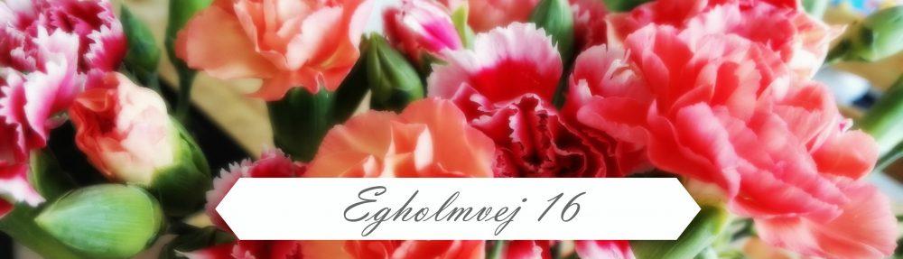 Egholmvej 16